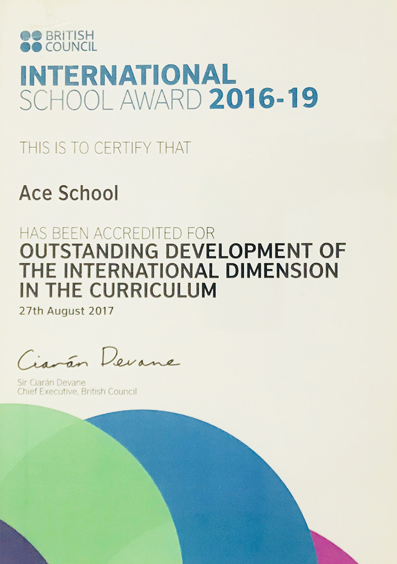 Outstanding Development of the International Dimension in the Curriculum 2016 -19